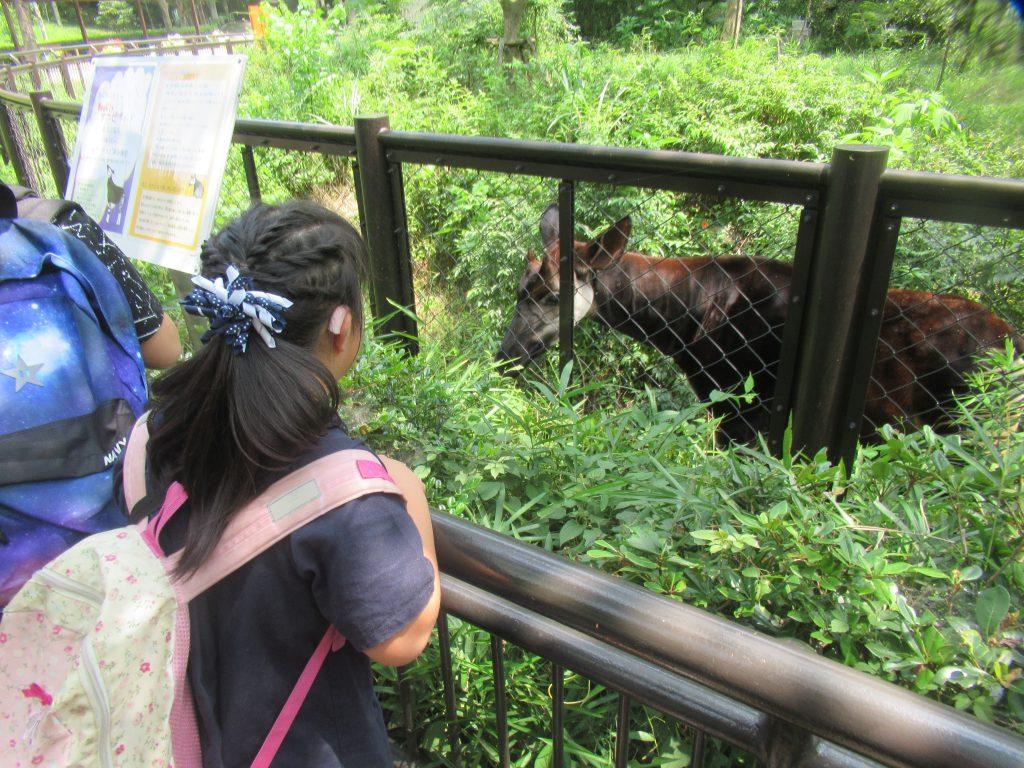 ハートリンク放課後等デイサービス磯子 金沢動物園に行ってきました